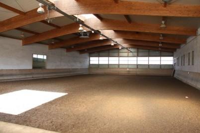 In idyllischer Lage, eingebettet in die Pfinztaler Landschaft in der Nähe von Karlsruhe, hat der RFV Pfinztal seine Heimat in der wunderschönen Reitanlage am Weidachsee gefunden. Seit 1990 liegt das Pferdeparadies, welches das Herz jedes Reiters höher sch